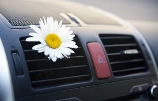 Fresh air. Car conditioning.