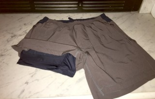 bird dog shorts 3