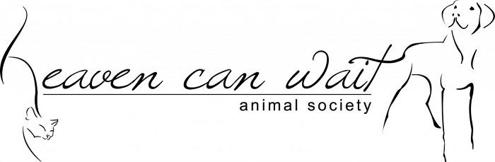 Heaven Can Wait Animal Society