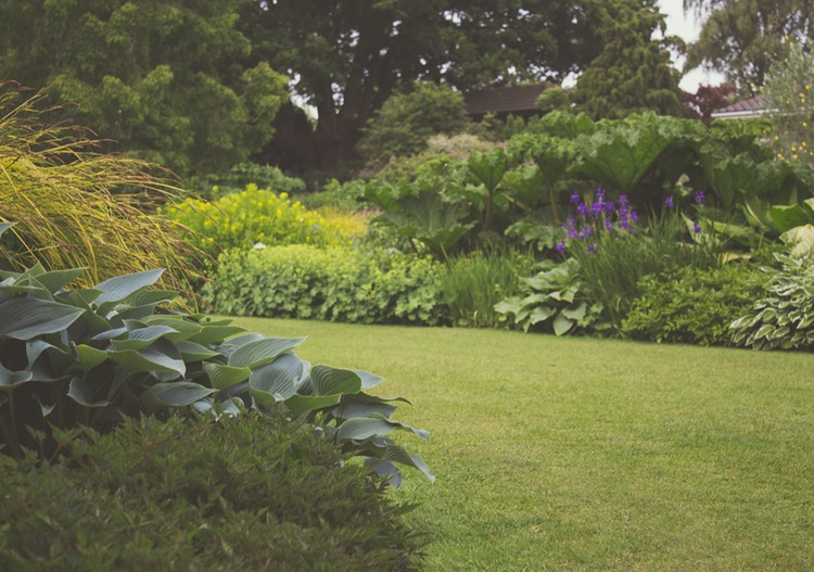 5 Inexpensive Ways to Landscape Your Yard