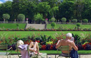 Garden Look Pretty & Increase Your House Value