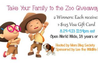 2-Winners $125 Visa Gift Cards