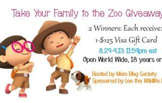 2-Winners $125 Visa Gift Cards