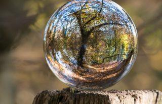 https://pixabay.com/en/environmental-protection-environment-683437/